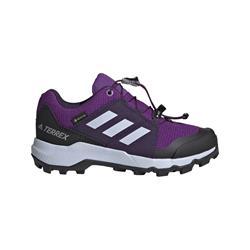 Adidas - Terrex Gore-Tex Wanderschuh (actpur-aerblu-trupnk)