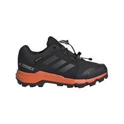 Adidas - Terrex Gore-Tex Wanderschuh (cblack-carbon-truora)