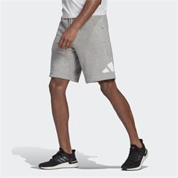 Adidas Sportswear FI Shorts grau